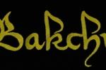 Bakchus_tricko07