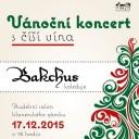 Christmas concert, Blansko (CZ)